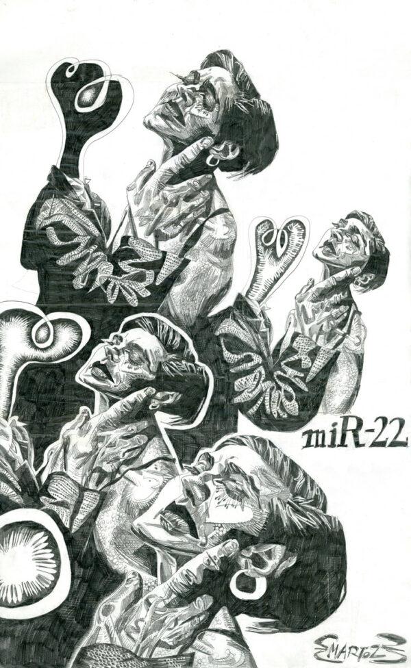 Martoz > Mirr-22