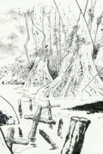 Xavier > Conquistador, illustration 1