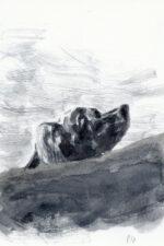 Bozonnet > Goya, illustration 3