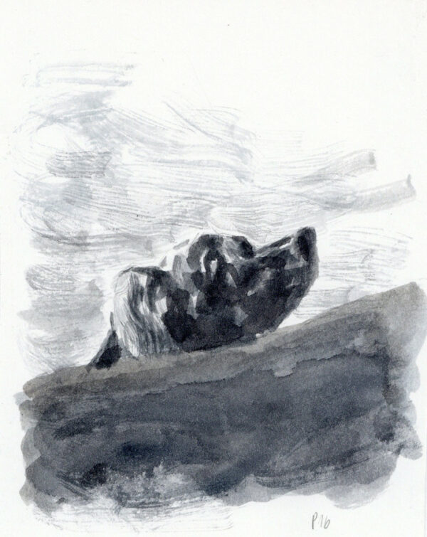 Bozonnet > Goya, illustration 3